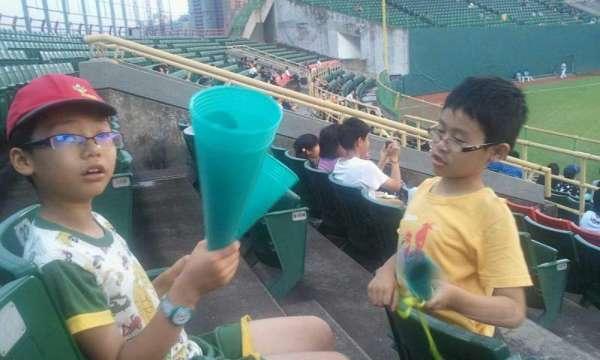 Taichung Intercontinental Baseball Stadium, vak: outfield